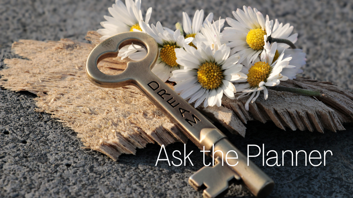 Ask the Planner